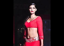 Sonam Kapoor's musing sexual connection motion picture