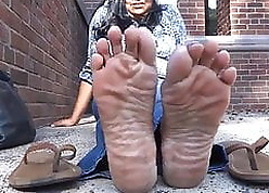 Grown-up Indian soles